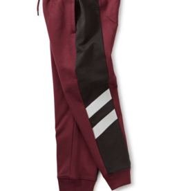 Tea Collection Good Sport Side Stripe Joggers Cordovan 2T-12