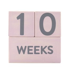 Wooden Milestone Age Blocks Pink