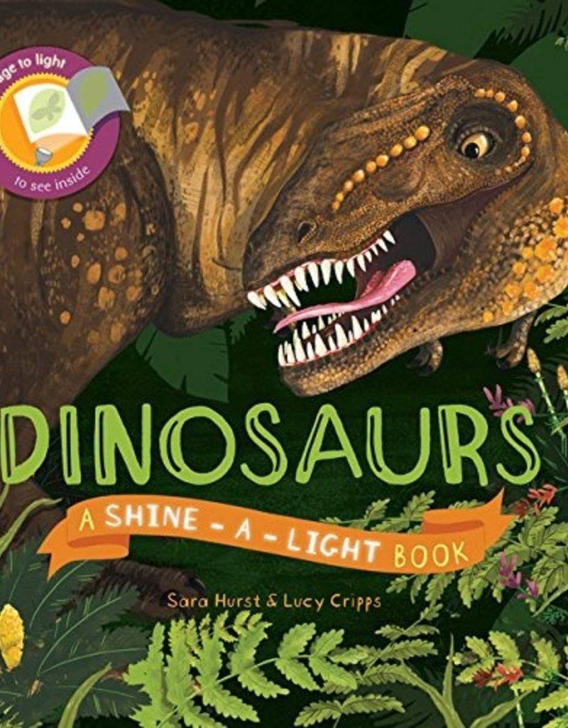 Usborne Dinosaur Shine a Light