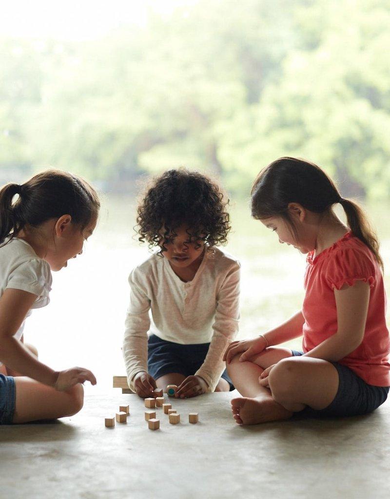 Plan Toys Memo Game