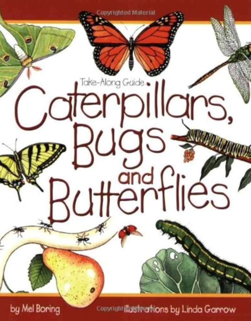 Take Along Guide Caterpillars, Bugs and Butterflies
