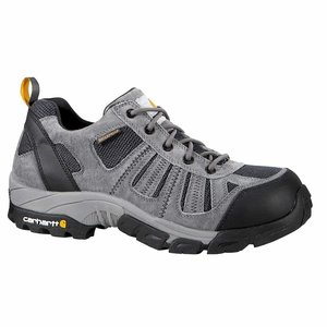 Carhartt Footwear Low WP Composite Toe Hiker