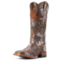 Ariat Women's Arroyo WST