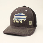 Ariat Striped Buffalo Hat