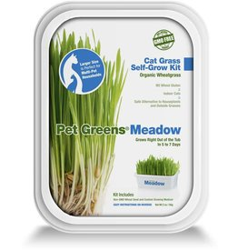 Pet Greens Self-Grow Cat Grass Kit