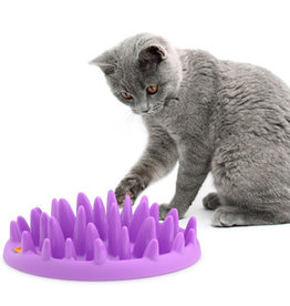 Company of Animals Cat Catch Interactive Slow Feeder