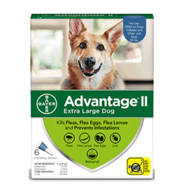 Bayer Advantage II Flea Treatment - Topical - XL - 6pk
