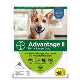 Bayer Advantage II Flea Treatment - Topical - XL - 4pk