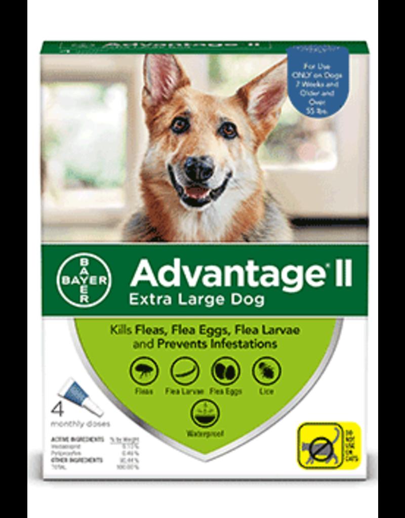 Bayer Advantage II Flea Treatment - Topical - XL - 4pk