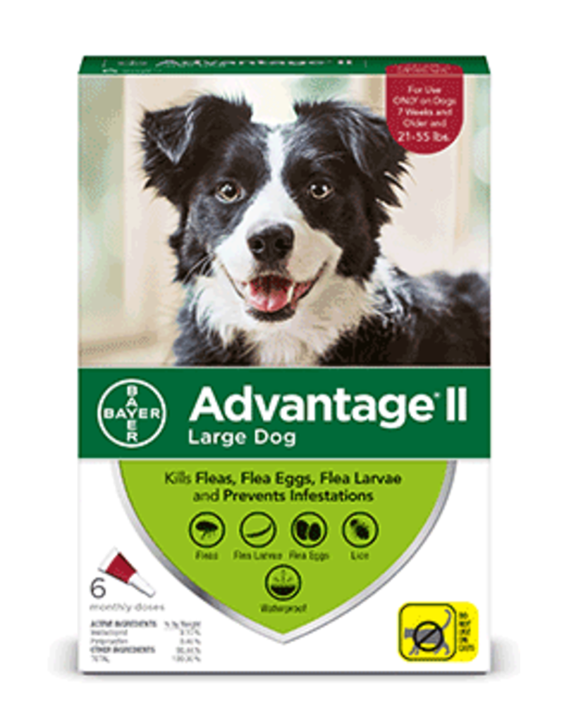 Bayer Advantage II Flea Treatment - Topical - Large - 6pk