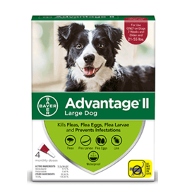 Bayer Advantage II Flea Treatment - Topical - Large - 4pk