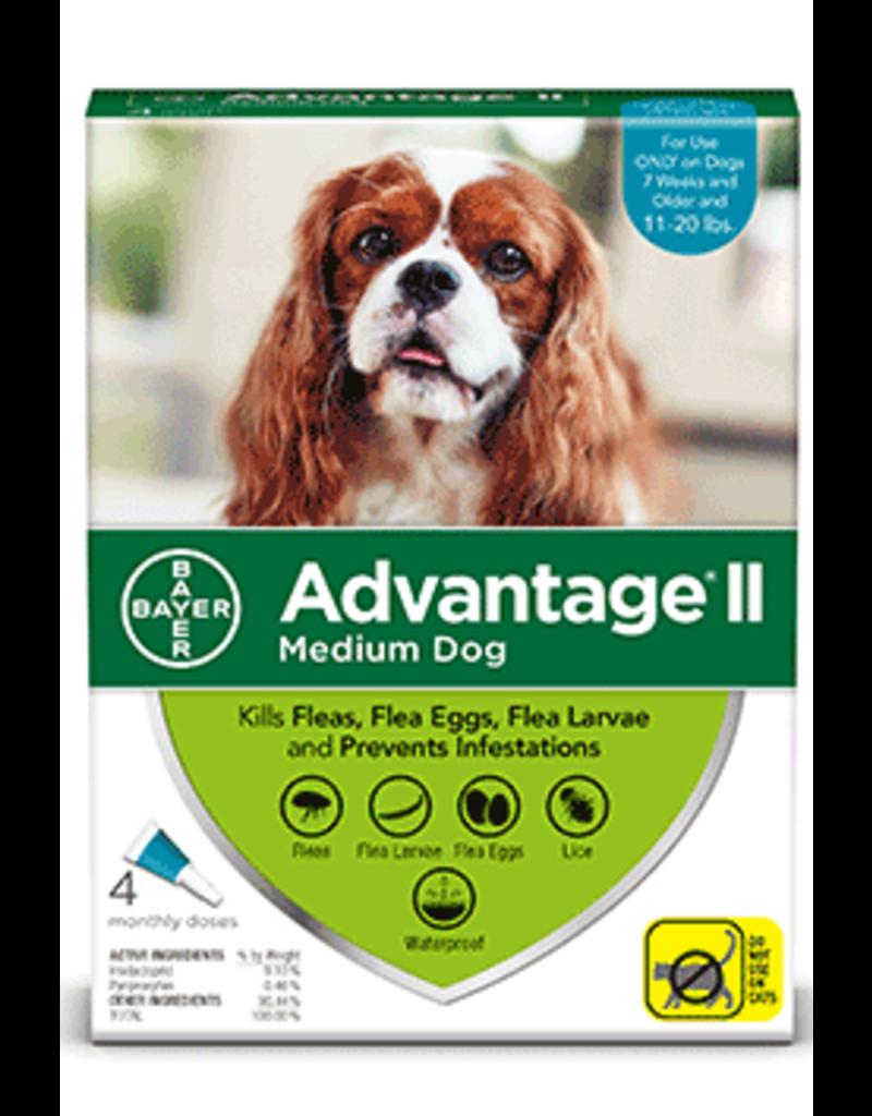 Bayer Advantage Il Flea Treatment - Topical - Medium - 4pk