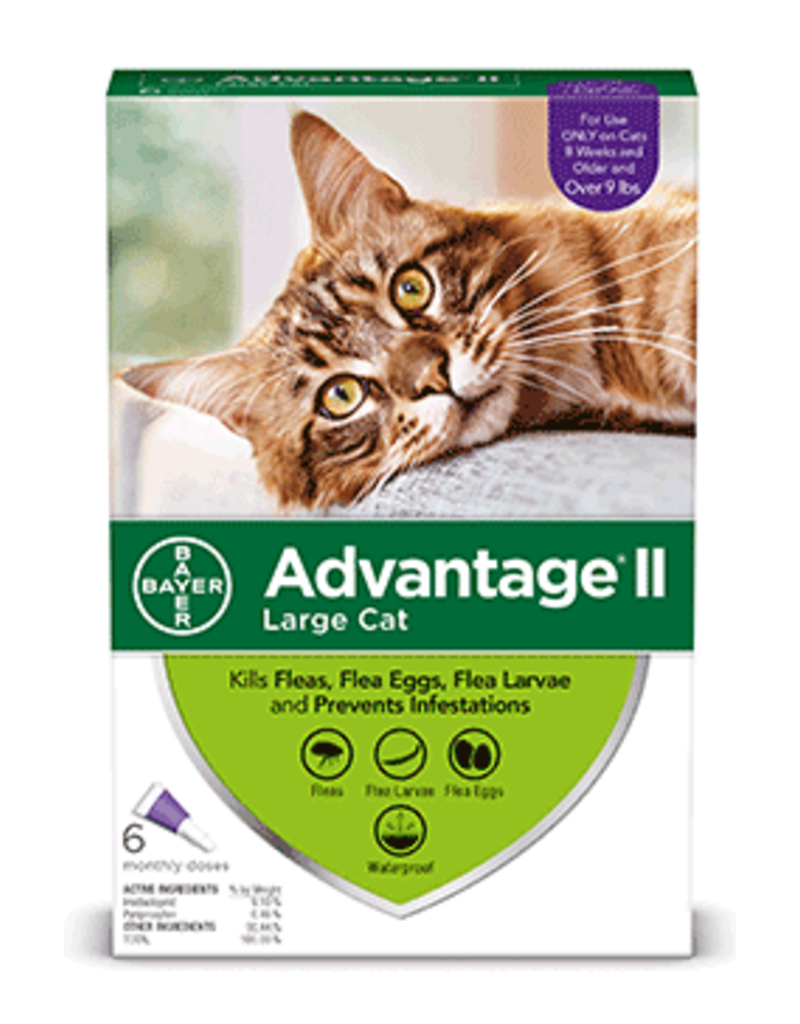 Bayer Advantage II Flea Treatment - Topical - Large Cat - 6pk