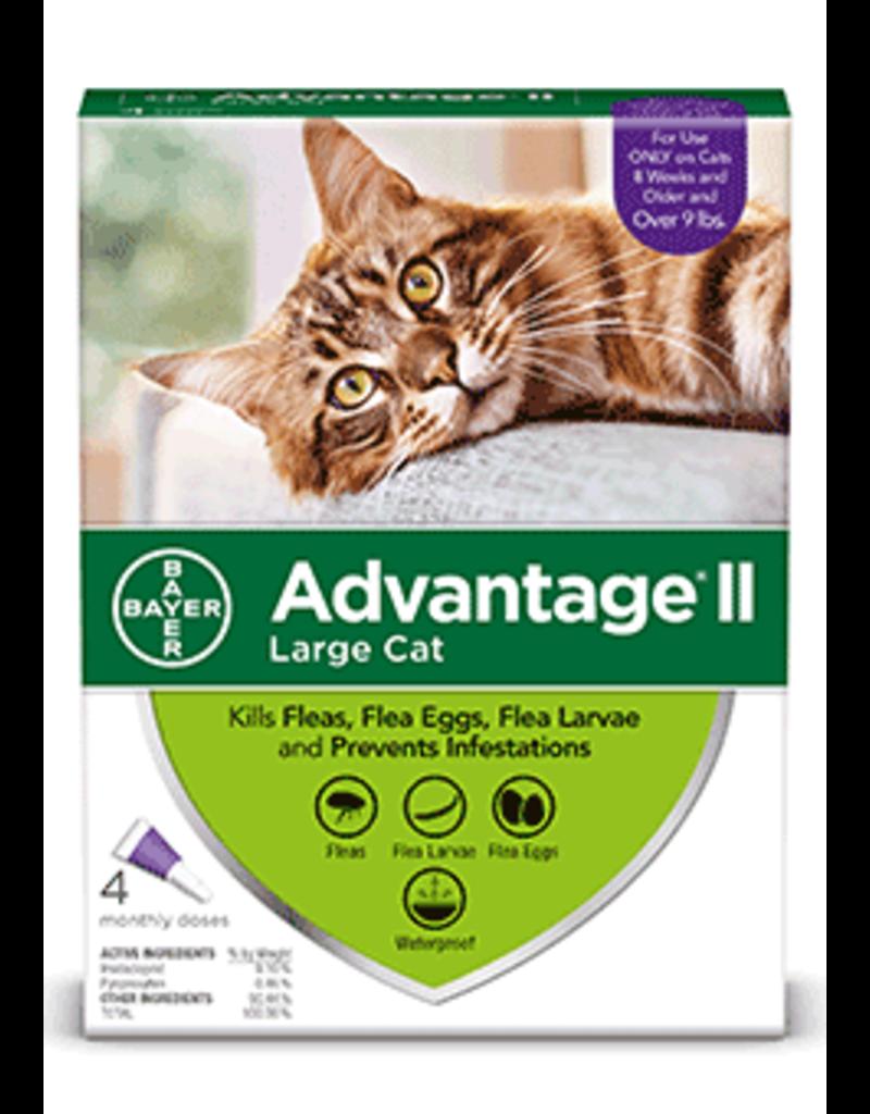 Bayer Advantage II Flea Treatment - Topical - Large Cat - 4pk