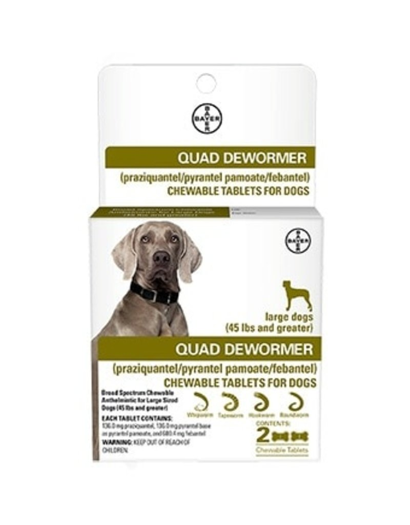 Bayer Quad Dewormer Large 2pk