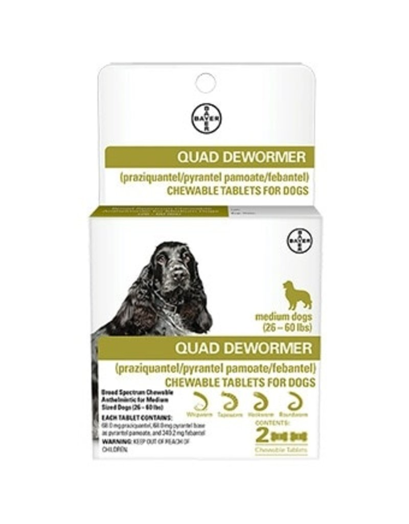 Bayer Quad Dewormer Medium 2pk