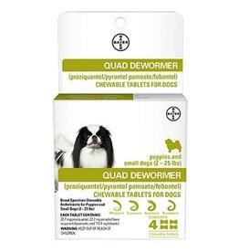 Bayer Quad Dewormer Small 4pk