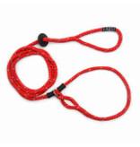 Harness Lead Red Small/Medium