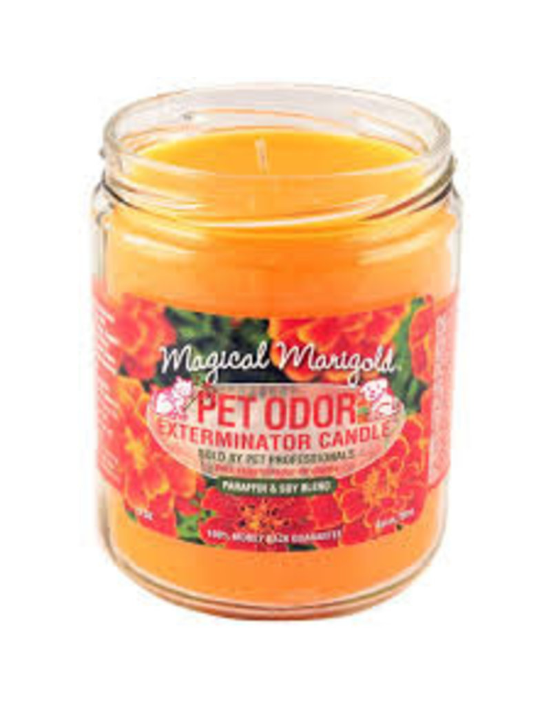 Specialty Pet Products Odor Exterminator Candle Magical Marigold