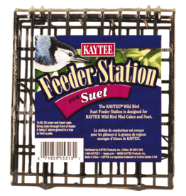 KayTee Suet Feeder Station