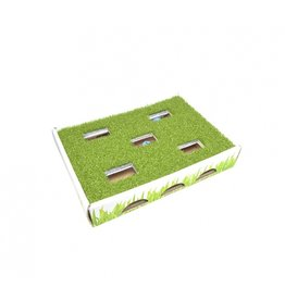 PetStages Cat Grass Hunting Box