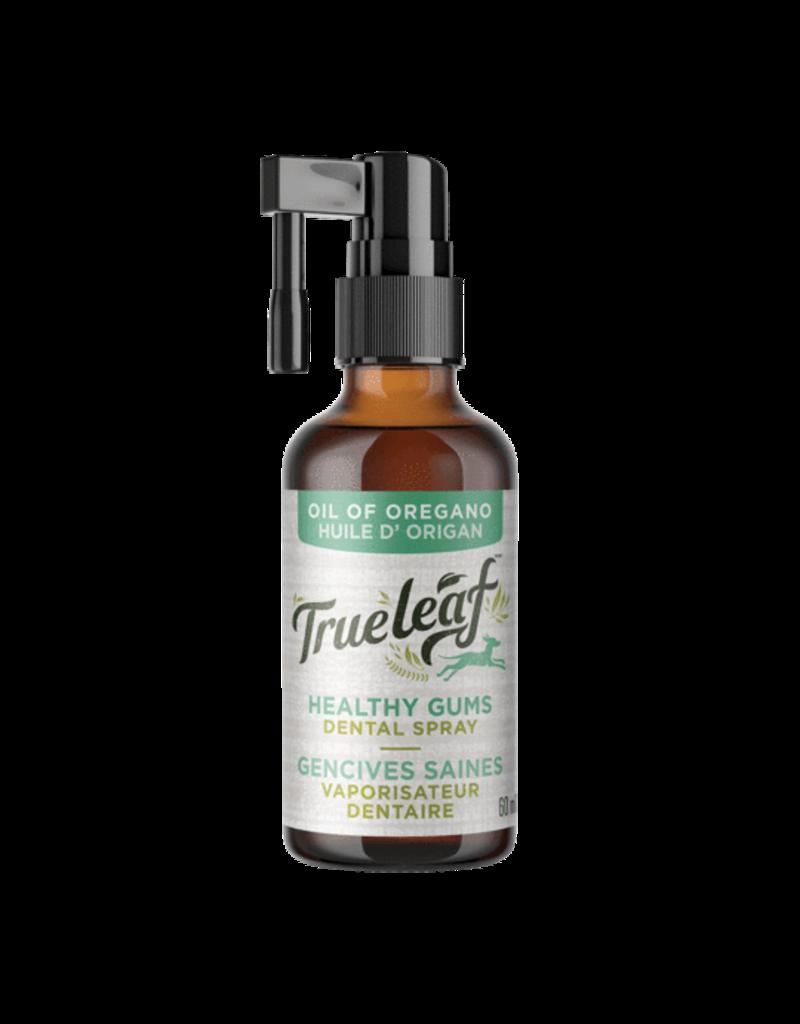 True Leaf Oregano Healthy Gums Dental Spray 60ml