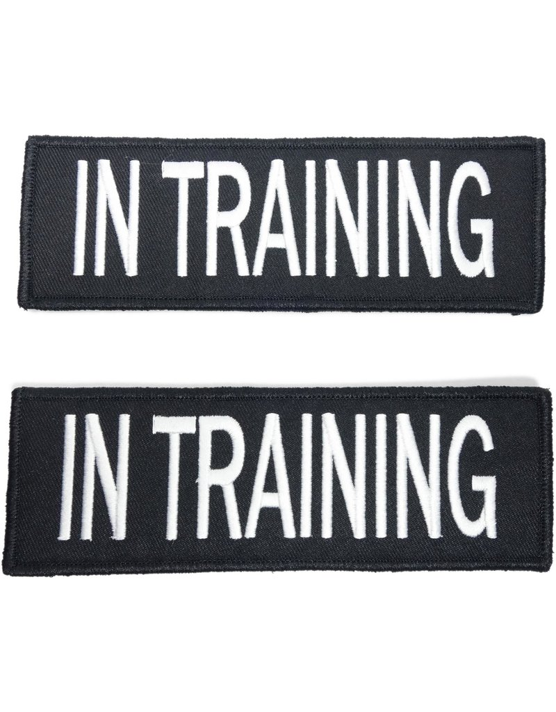 Bay Dog IN TRAINING Patch Large