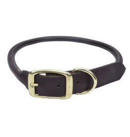 Coastal Leather Round Collar with Brass Hardware