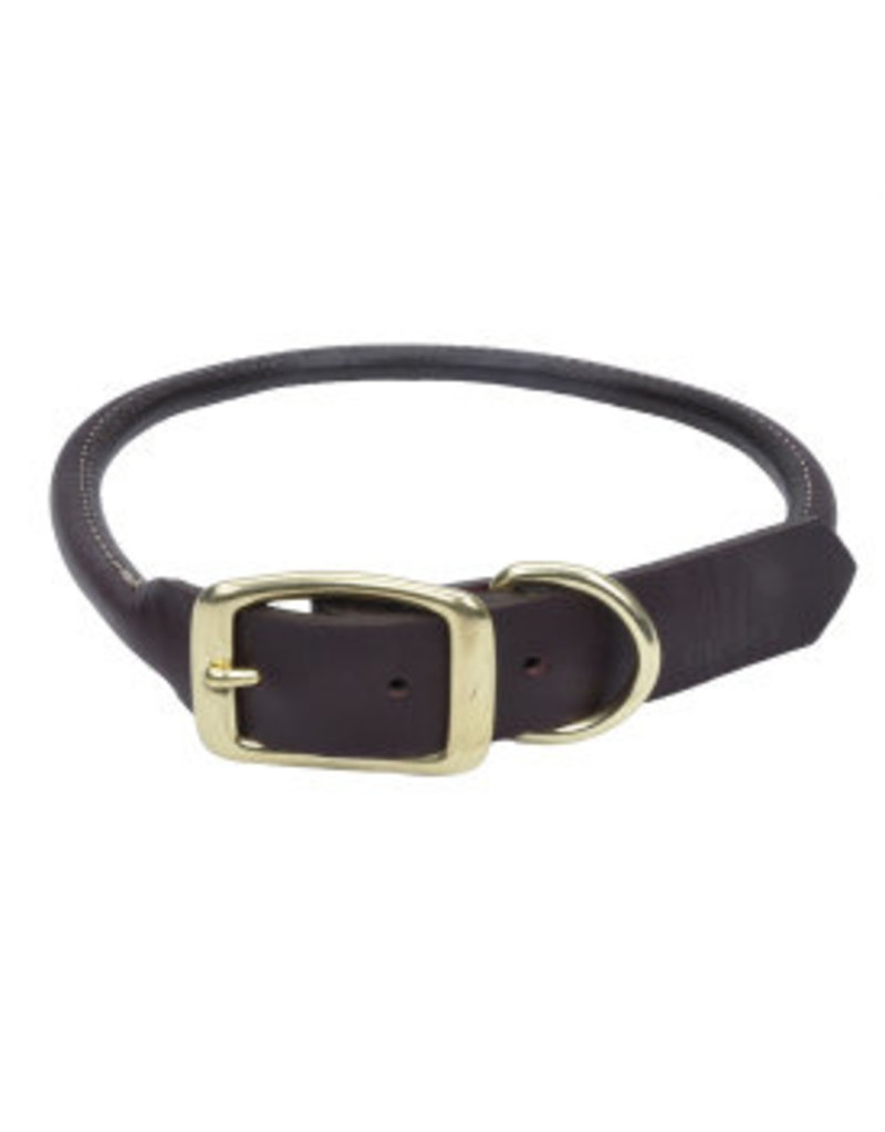 Coastal Leather Round Collar with Brass Hardware