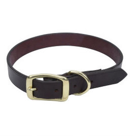 Coastal Leather Town Collar with Brass Hardware