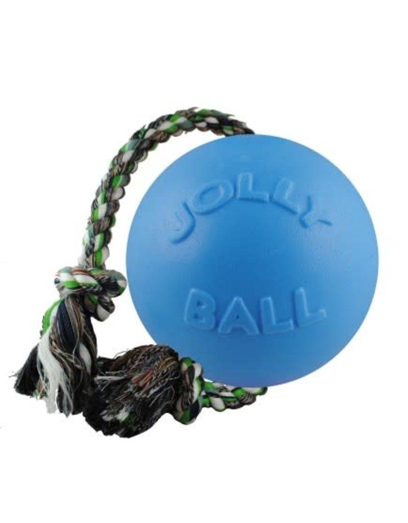 Jolly Pets Romp-N-Roll