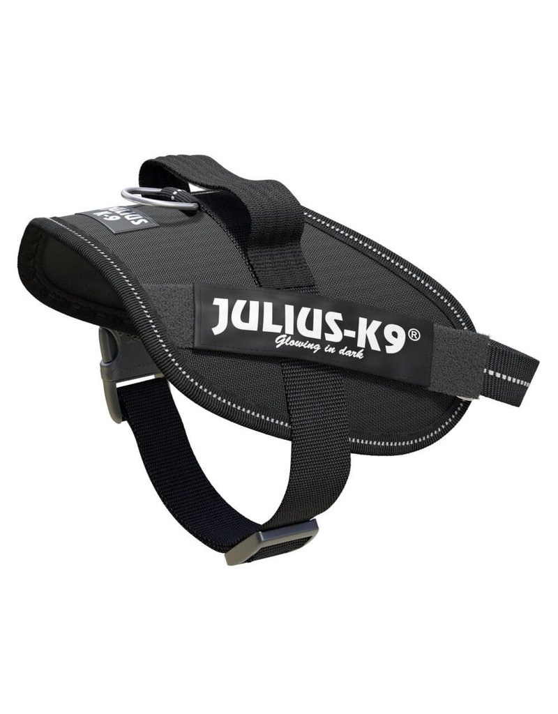 Julius-K9 IDC-Powerharness