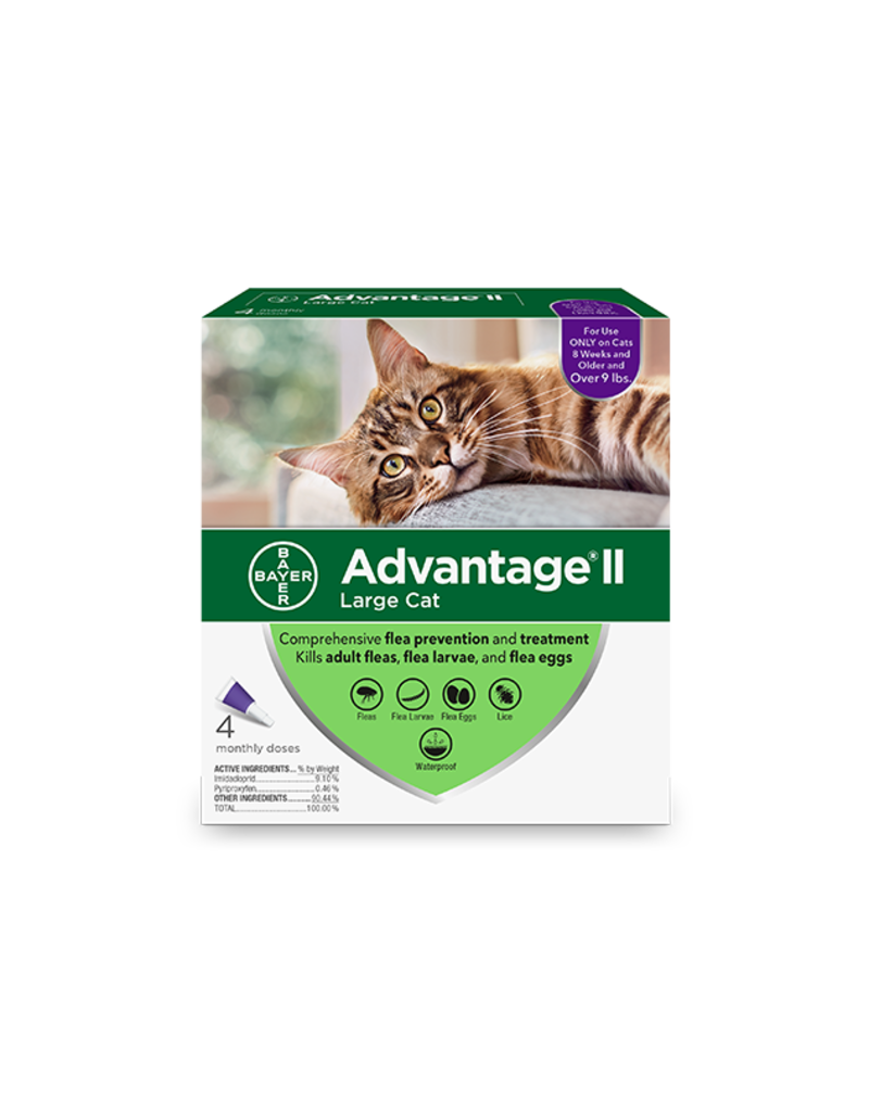 Bayer Advantage II for Cats