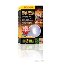 Exo-Terra Daytime A19 Heat Lamp, 100W