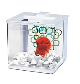 Marina Betta EZ Care Aquarium, White
