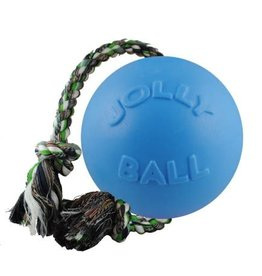 Jolly Pets Romp-n-Roll Durable Dog Toy Blueberry 4.5in