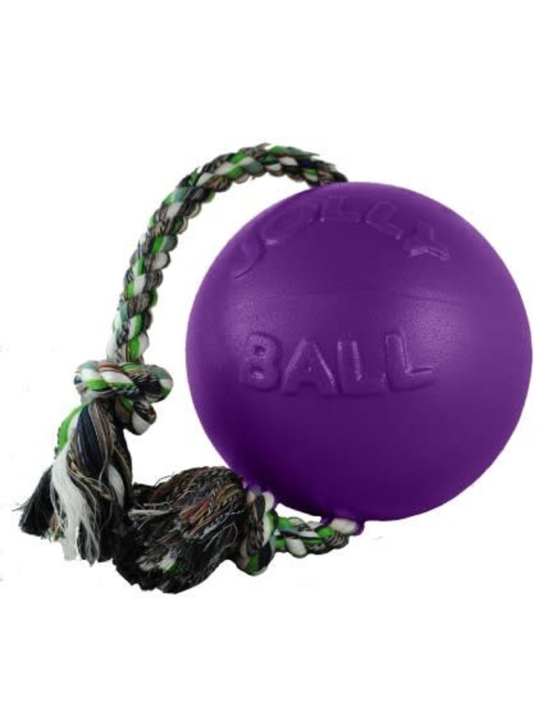 Jolly Pets Romp-n-Roll Durable Dog Toy Purple 6in
