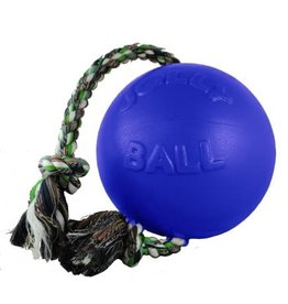 Jolly Pets Romp-n-Roll Durable Dog Toy Blue 8in