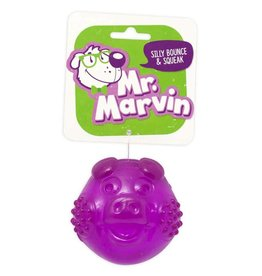 Mr. Marvin Squeak & Bounce Pig