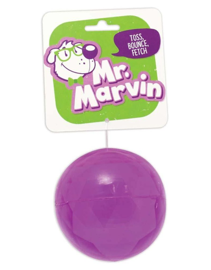 Mr. Marvin Toss Bounce Fetch Ball