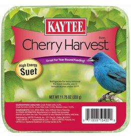 KayTee Cherry Harvest Suet Feed, 11.75oz