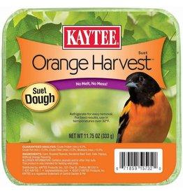 KayTee Orange Harvest Suet Dough, 11.75oz