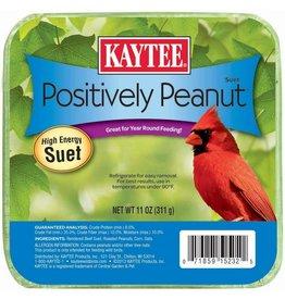 KayTee Positively Peanut Suet, 11oz