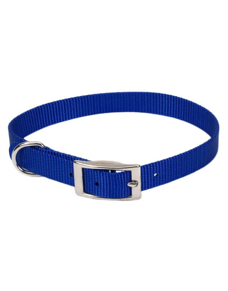 "Coastal Collar Blue 5/8""W 12""L"