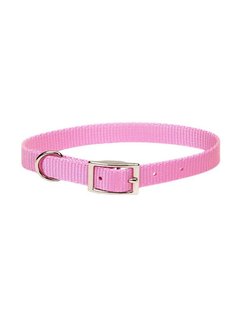 """Coastal Collar Pink 5/8""""W 12""""L"""
