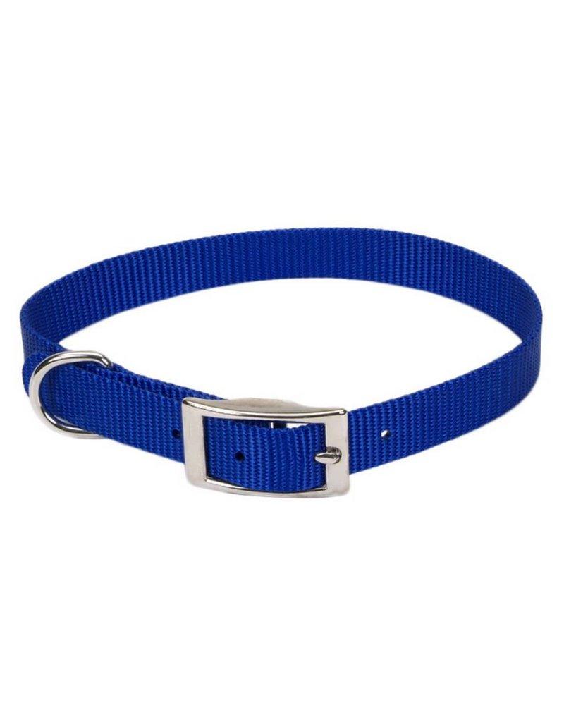 """Coastal Collar Blue 3/4""""W 18""""L"""