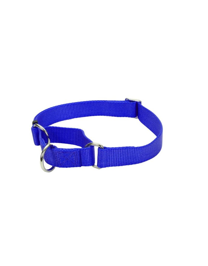 "Coastal Martingale Collar Blue 5/8""W 14""L"