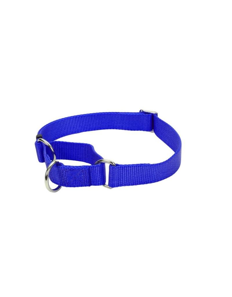 "Coastal Martingale Collar Blue 3/4""W 20""L"