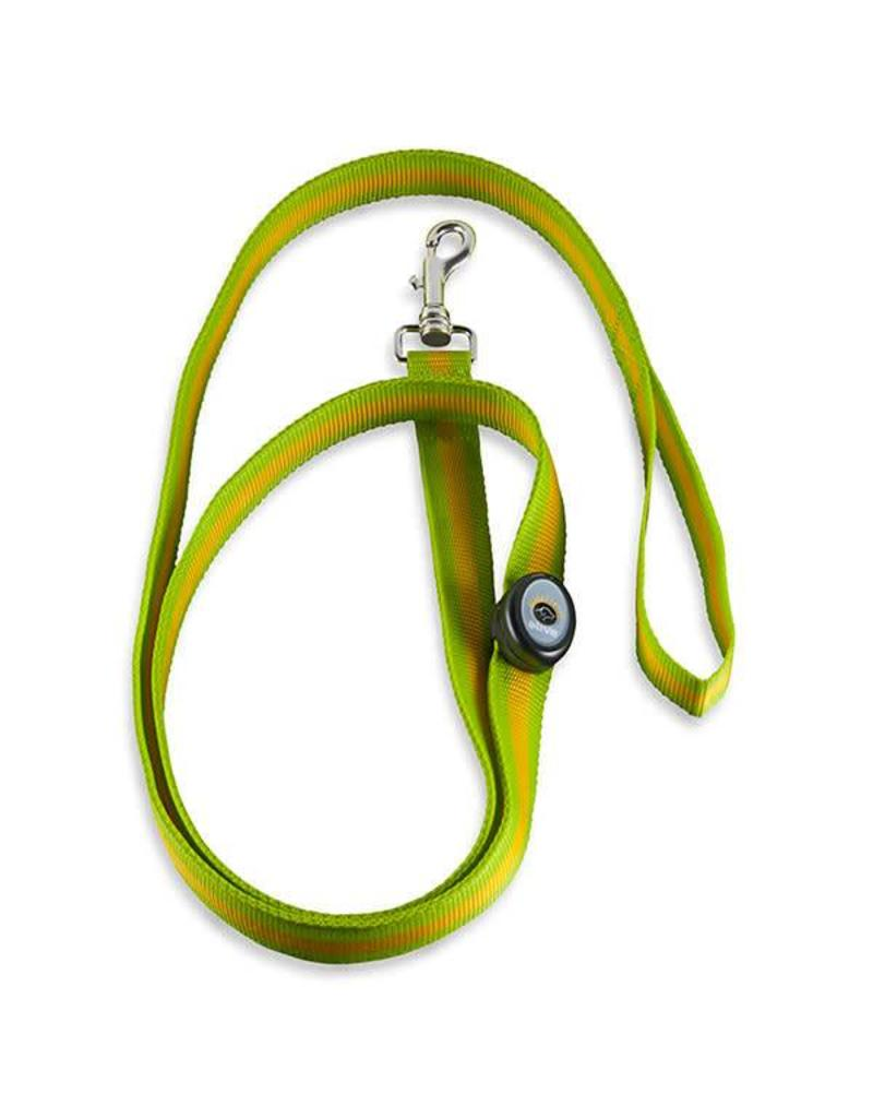 Elive LED Dog Leash 6' Green