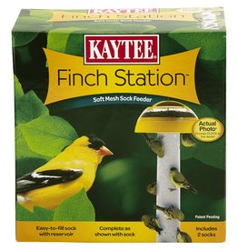 KayTee Finch Station